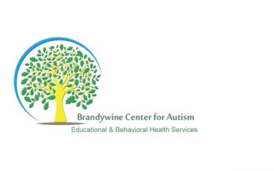 Brandywine Center for Autism Earns BHCOE Accreditation